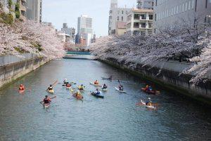 2017.4.5 東京運河お花見ツーリング